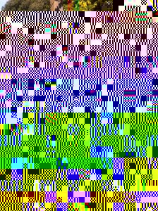 Quiz Afternoon on the Decking - 2013